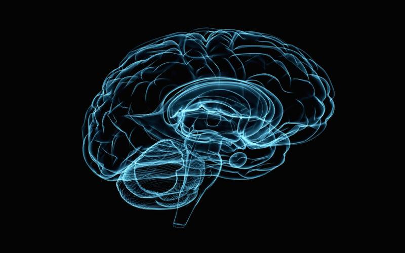 can a heroin rehab in Massachusetts help my brain